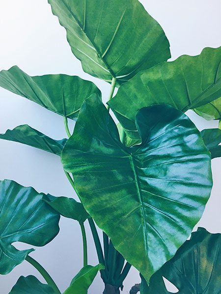 Elephant ears plant artificial