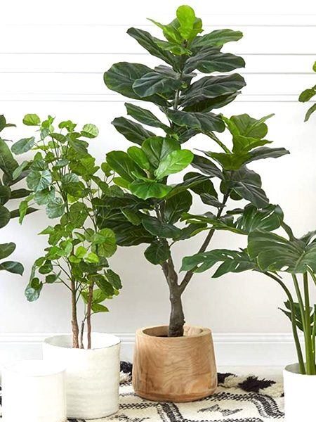 Fiddle Leaf Fig Tree Artificial