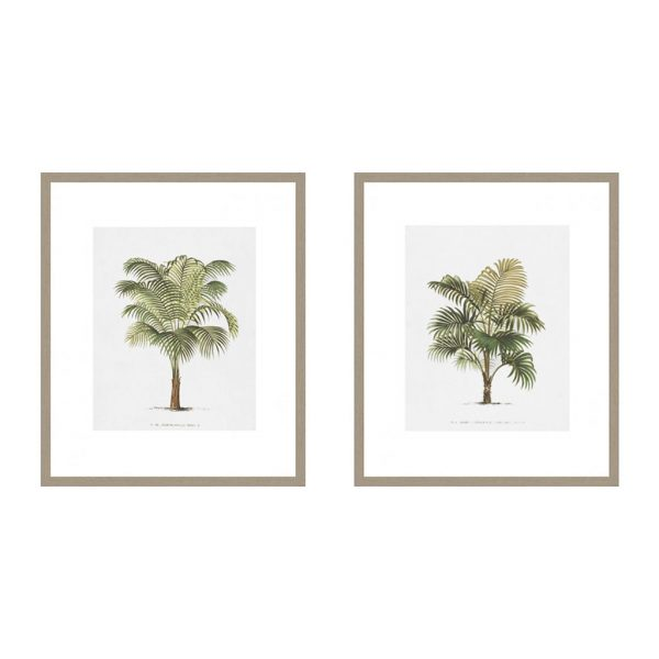 Les Palmiers on White II & IV $285 each