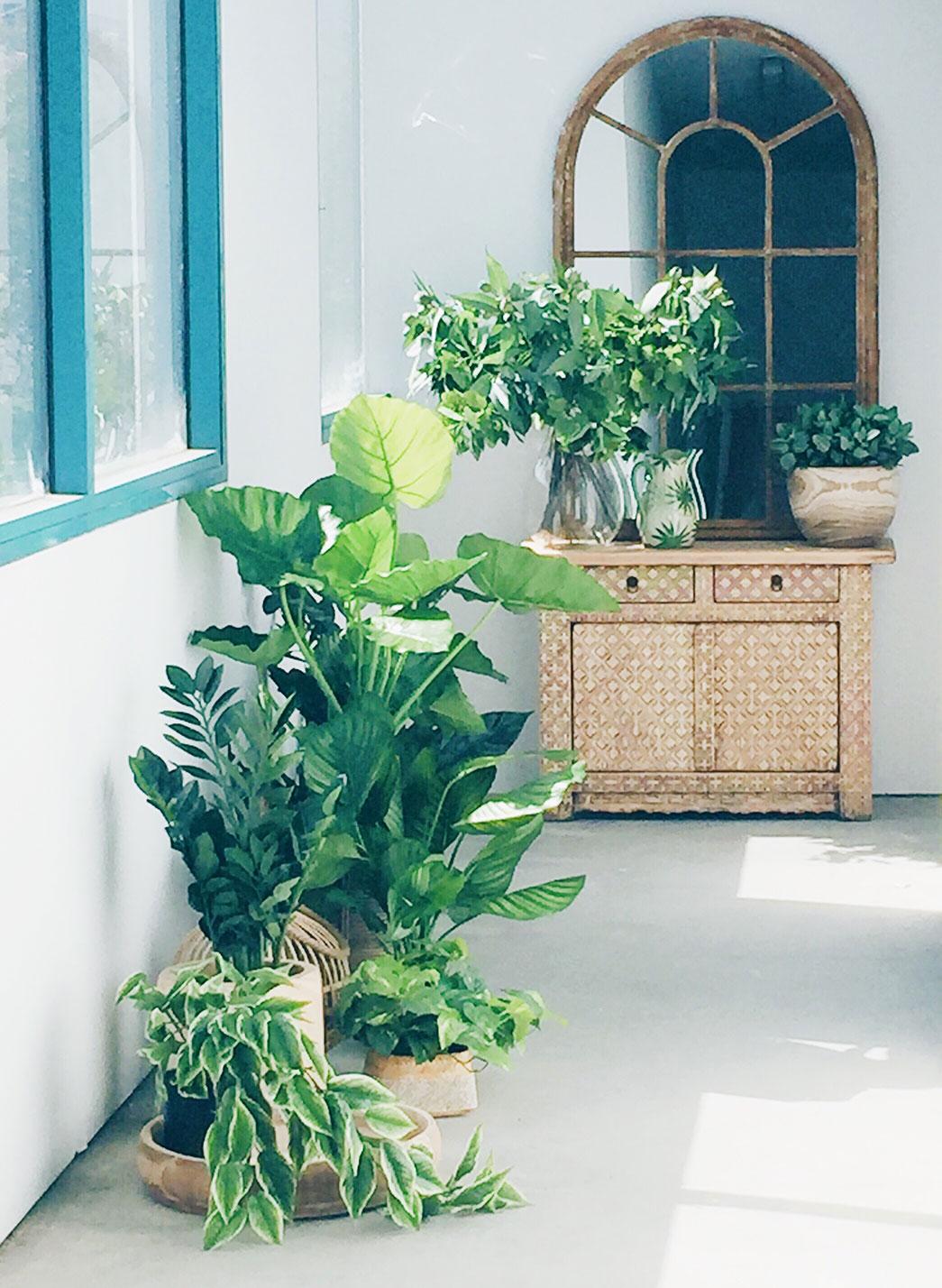 indoor-plants-artificial-SHACK